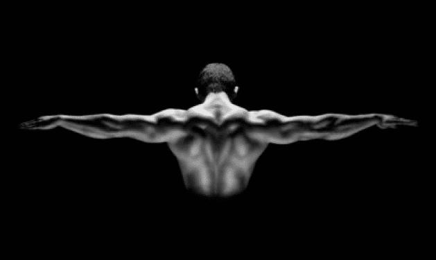 Muscler et renforcer son dos mybigbang